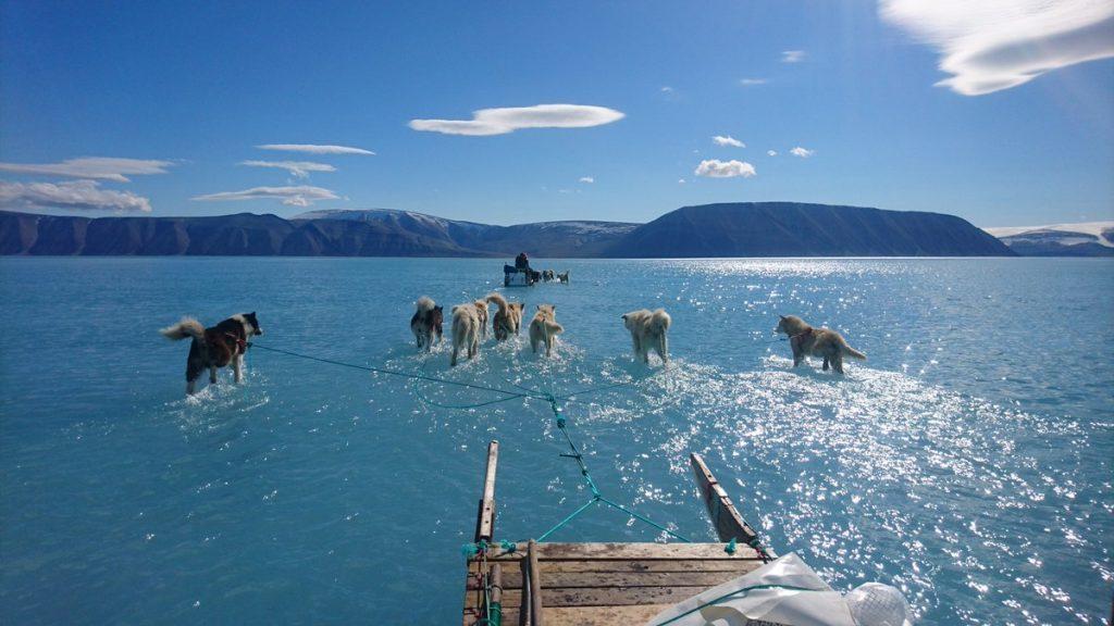artico calentamiento global